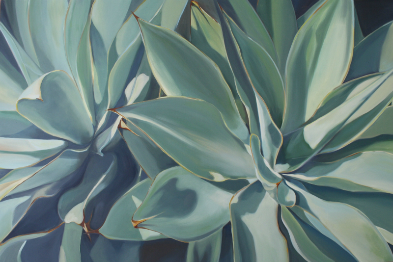 winter agave