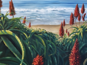 Butterly Beach Aloes